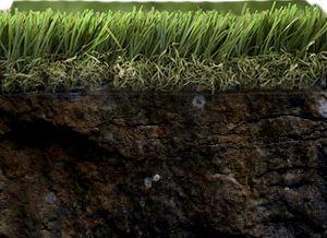 vue en coupe d'une fibre de pelouse synthétique