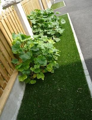 pelouse synthétique le long d'une voirie
